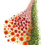 """""""Paths of Color [red, orange and green]"""" by MarinaKanavaki"""