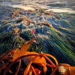 """Seaweedy Sunset"" by sabinedukes"
