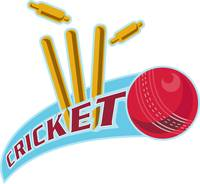 cricket sports ball wicket