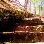 """""""Douthat State Park Rock Stairway 2"""" by FunkyArt"""