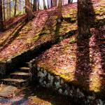 """""""Douthat State Park Rock Stairway 1"""" by FunkyArt"""