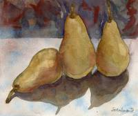 Bosc Pears, still life painting of fruit
