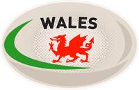Rugby Ball Wales Welsh dragon