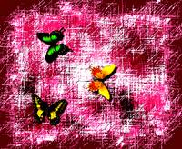 Three Butterflies On Red Burgundy Abstract
