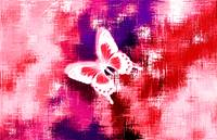 Red White Butterfly On Violet Red Abstract