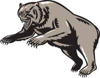 grizzly bear attacking woodcut style