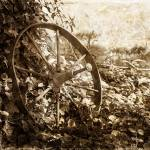 """vintage wheel"" by beckybarnhardt"
