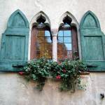 """Asolo Shutters For Looks"" by DonnaCorless"