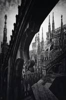 Between gotic capitals