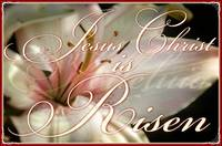 christ is risen (2)