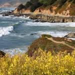 """California Coast Overlook"" by Groecar"