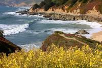 California Coast Overlook by Carol Groenen