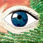 """Dragon Beauty- crackle enlarge"" by Sharixon"