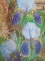 Irises by the Stream