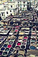 Tanneries 1