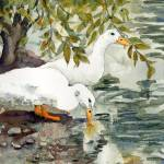 """Duck Bird Watercolor Art, Feelin"