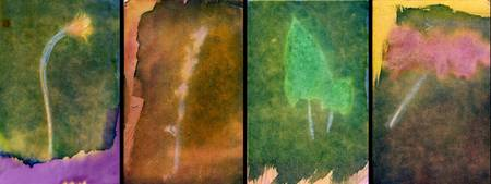 from the arbor 4 painted photographs