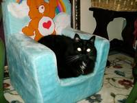 Molly in a Care Bear Chair