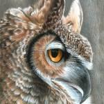 """Sepia Owl"" by CarlaKurtArt"
