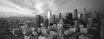 Los Angeles Black and White