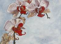 Arching Orchids
