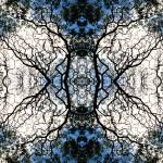 """""""017 - ABSTRACT TREES, #17, EDIT D"""" by nawfalnur"""