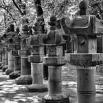 """Ueno Park"" by robertmeyerslussier"