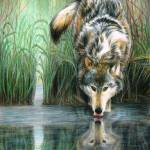 """""""Afternoon Reflection"""" by CarlaKurtArt"""