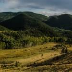 """""""Colorado Rockies"""" by PronghornPix"""