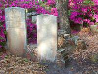 Ornate Headstones