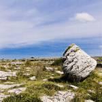 """Ireland,burren,study 2"" by beppeschiavonephotography"