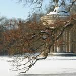 """Winter"" by angelabruno"