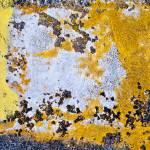 """yellowwhite"" by NOTOFOTOARTWORKS"