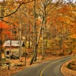 """Tishomingo State Park, Mississippi"" by Joanah"