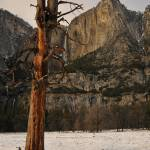 """Yosemite Falls"" by mblaisdellphoto"