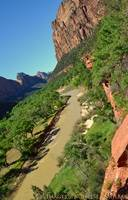 Virgin River through Zion