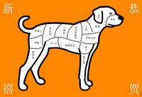 Year of the Dog: Orange