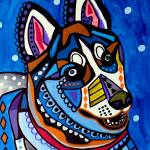 """Siberian Husky"" by hgaller"