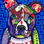 """Pit Bull"" by hgaller"