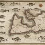 """""""milos"""" by Titosr"""