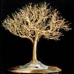 """GOLDEN ELM - Wire Tree Sculpture, by Sal Villano"" by WireTrees"