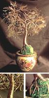 Asian Golden Leaves - Wire Tree Sculprure
