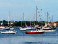 Group Of Sailboats Newport Ri