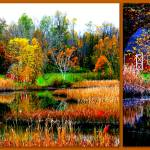 """October in the Berkshires"" by theviewfromhere"