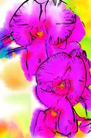 Abstract Orchid 3