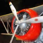 """F3F-2 Biplane"" by susansartgallery"