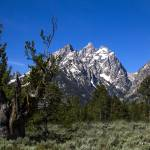 """_MG_2526.Tetons.Cathedral group.1"" by SamSherman"