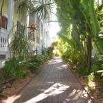 """""""Garden Walkway"""" by VernonHawkins"""