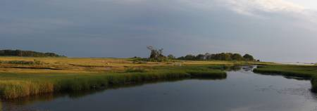 Salt Water Marshes Panoramic, Nature Photography