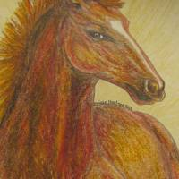 Red Race Horse Art Prints & Posters by Monique Montney